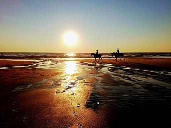 plage_coucher_de_soleil_cheveax.jpg